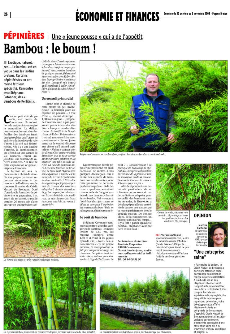 Bambous - Accueil
